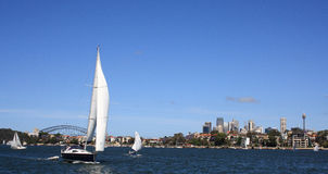 Sail Boat in Sydney Harbour Royalty Free Stock Photos