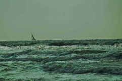 Sail boat on waves Stock Image