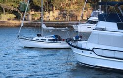 Sail boat / yacht and two motor motor yacht cruisers moored in the shade. On the harbour at sunset Royalty Free Stock Photos
