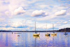 Sail boats Stock Image