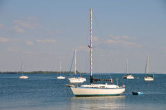 Sail Boats Royalty Free Stock Photography