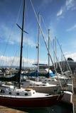 Sail Boats Stock Photo