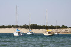 Sail boats in the bay. Sail boats anchored in a sandy bay (arabian gulf Stock Images