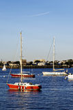 Sail Boats in Boston Harbor Royalty Free Stock Photos