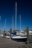 Sail Boats Docked. In the harbor at Manteo, North Carolina royalty free stock photos