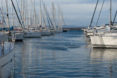 Sail boats docked in marina Royalty Free Stock Photo