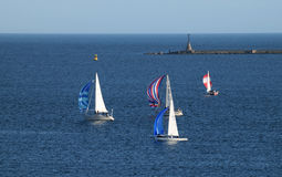 Sail boats in race. Sailing vessels in race around Plymouth Sound, Devon, UK, mid summer evening Royalty Free Stock Photography