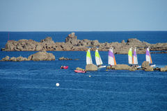 Sail boats in the sea Stock Image