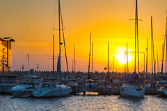 Sail boats at the sunset. Israel Royalty Free Stock Images