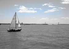 Sailing around Manhattan island. Sail cruising outside Manhattan, New York, with the headsail almost furled royalty free stock photo