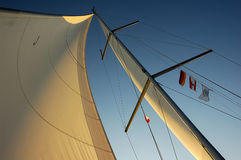 Sail in the evening sun. Foresail of a sailing boat, sailing on the Baltic Sea royalty free stock photo