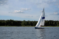 Sail on the lake Stock Image
