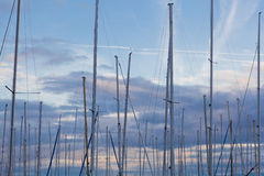 Sail mast background Stock Photography