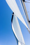Sail of a sailing boat. sailing yacht on the water Royalty Free Stock Photo
