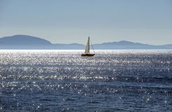 Sail on the sea Stock Photography