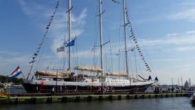 Sail Amsterdam royalty free stock photography