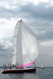 Sail summer. Stock Images