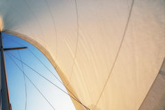 Sail at sunset Royalty Free Stock Photography