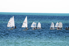 Sail training Royalty Free Stock Photos