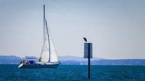 Sail, Water Transportation, Sailboat, Sailing Ship stock images