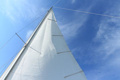 Sail Royalty Free Stock Photo