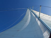 Sail of the yacht Stock Photography