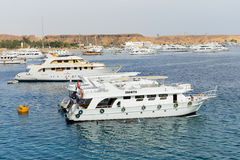 The sail yachts with tourists are in harbor of Sharm el Sheikh Stock Images