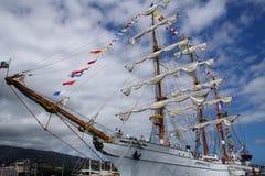 sailboat κουρευτών ζώων στοκ εικόνα με δικαίωμα ελεύθερης χρήσης