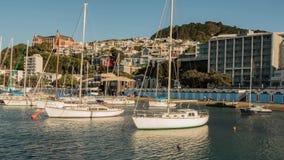 Sailboat μαρίνα στο χρονικό σφάλμα ηλιοβασιλέματος απόθεμα βίντεο