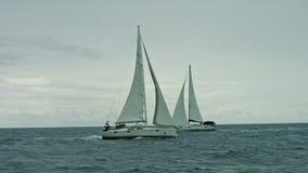 Sailboat που επιπλέει στη θάλασσα απόθεμα βίντεο