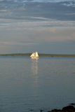 Sailboat στη θάλασσα Στοκ Εικόνα