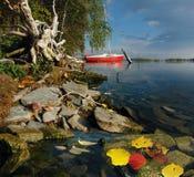 Sailboat φθινοπώρου Στοκ Εικόνα