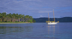 sailboat φοινικών δέντρα στοκ εικόνες