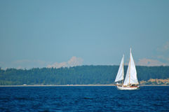 Sailboat Royalty Free Stock Photo