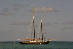 Sailboat. In the water before sunset Royalty Free Stock Images