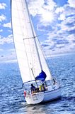 Sailboat. With white sail sailing on a sunny day Stock Image