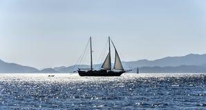 Sailboat Στοκ Εικόνα