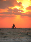 Sailboat. Against a bright yellow, setting sun with red sky royalty free stock photo