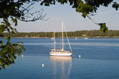 Sailboat anchored in harbor. An early morning view of a private yacht or sailboat anchored in the quiet harbor of Bass Harbor, Maine Royalty Free Stock Photo