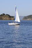 Sailboat in the bay Royalty Free Stock Image