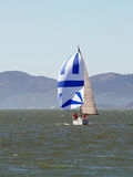 Sailboat on bay with spinnaker and main sail Royalty Free Stock Photography