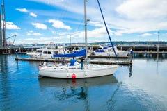 Sailboat in Bell Harbor Marina Stock Image