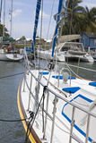 Sailboat bow. Marina view of sailboat bow with others boats in the background Stock Photos