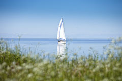 Sailboat in Calm Water Stock Photography