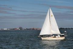 Sailboat on Chesapeake Bay Royalty Free Stock Photography