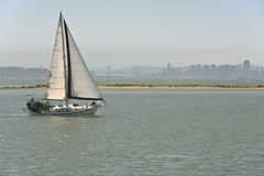 Sailboat cruising San Francisco CA. Royalty Free Stock Photos
