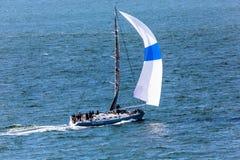 Sailboat Downwind. San Francisco, CA, USA - May 21, 2016:  A blue sailboat on a downwind tack in San Francisco Bay Royalty Free Stock Images