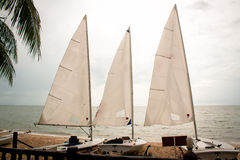 Sailboat. The sailboat, The enjoy activity in summer royalty free stock photo