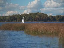 Sailboat floating on the lake. HD stock video