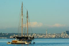 Sailboat in front of Seattle. Beautiful sketch moored in Eagle Harbot Royalty Free Stock Photos
